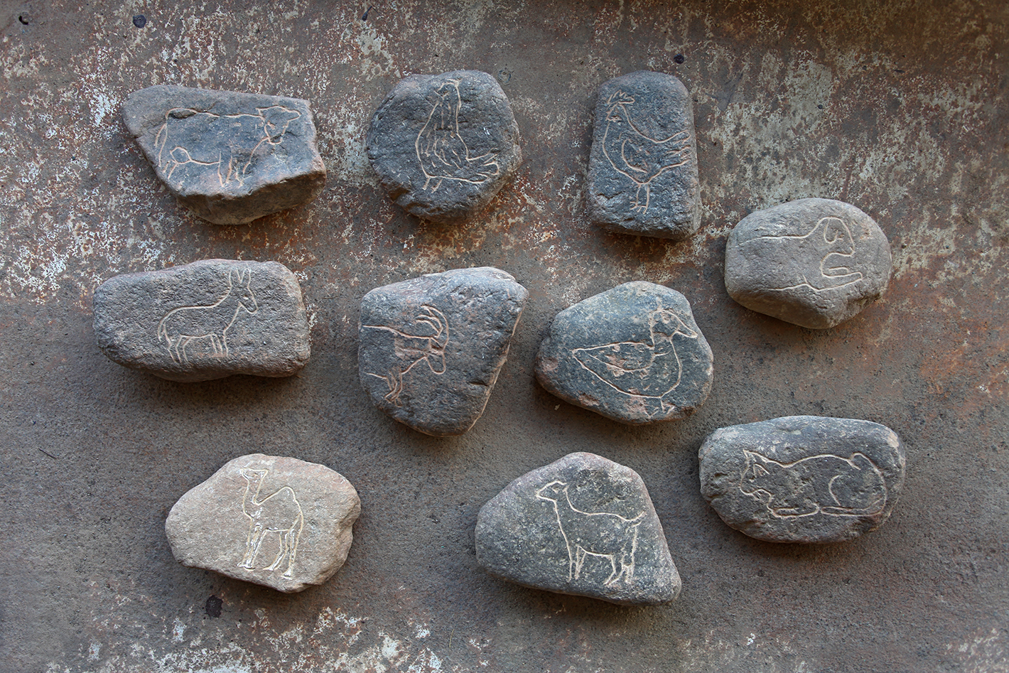 The Comparative Journey, Ten Engraved Stones with Animal Figures Image