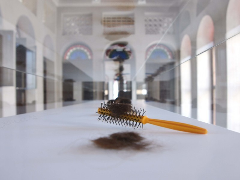 Hairs from the Hairbrushes of Palestinians